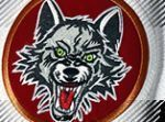 Chicago Wolves Store coupon codes