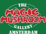 Magic mushroom Coupon Codes & Deals