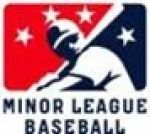 MILB coupon codes
