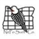 NePo Suet Company Coupon Codes & Deals